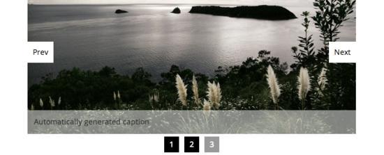 11个新鲜出炉的jQuery图像滑块插件
