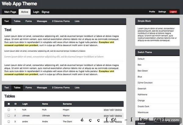 管理网站模板11